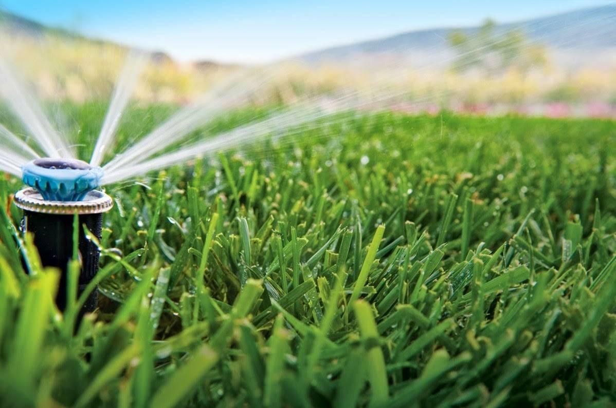 Instalaciones de riego en valencia hidro sun for Aspersores de riego para jardin